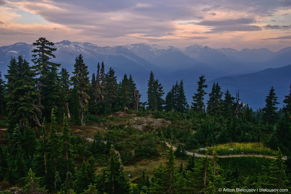 Mount Sproatt alpine trail vista