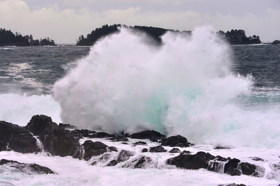Storm Watching, Ucluelet, BC