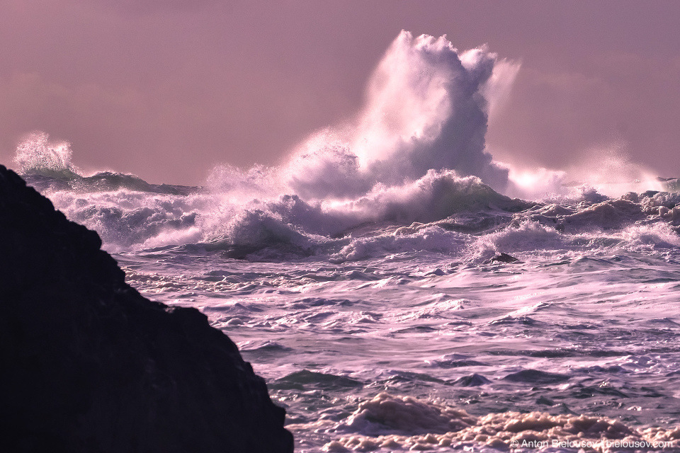 Storm Watching in Ucluelet, BC