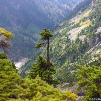 Первые несколько километров — обманчиво легкие: знай себе скачи через корни и камни по лесной тропе. Почему же обманчиво легкие — спросите вы? Да потому что 20 километров спустя вы эти камни и корни будете готовы проклясть.