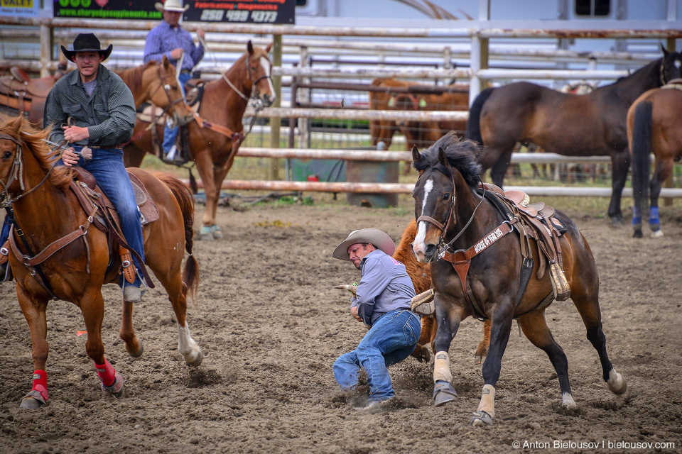 Rodeo in Keremeos, BC'