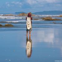 Бичкомбинг — это такое занятие: бродить по пляжу и искать дары моря в литоральной зоне (ниже линии прилива).