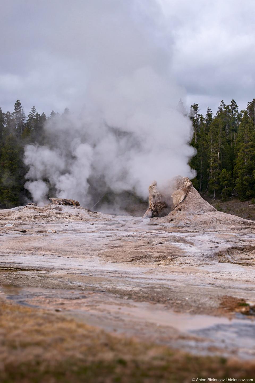 Giant Geyser & Bijou Geyser — Yellowstone, NP
