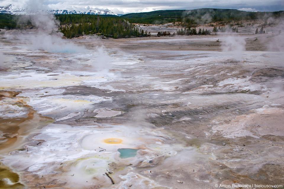 Norris Geyser Basin — Yellowstone NP