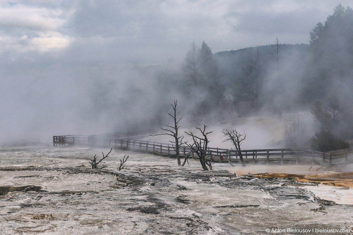 Mammoth Hot Spring — Yellowstone, NP