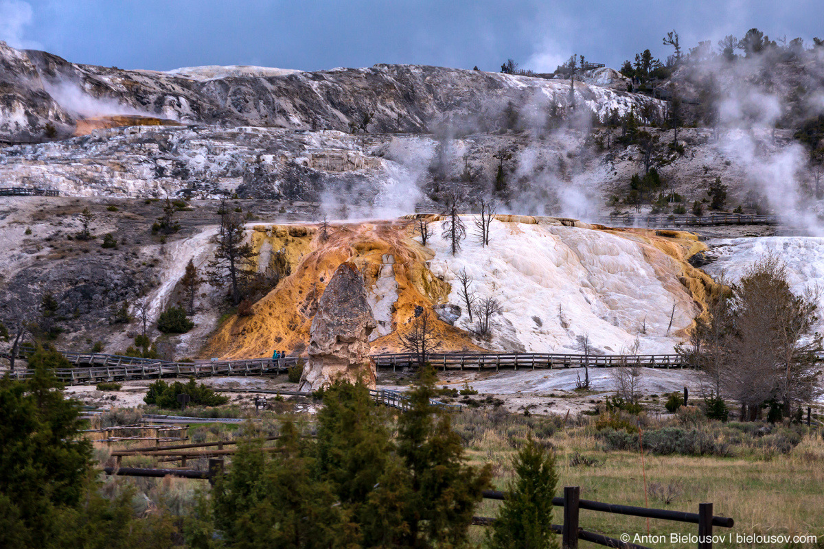 Mammoth Hot Springs — Yellowstone, NP
