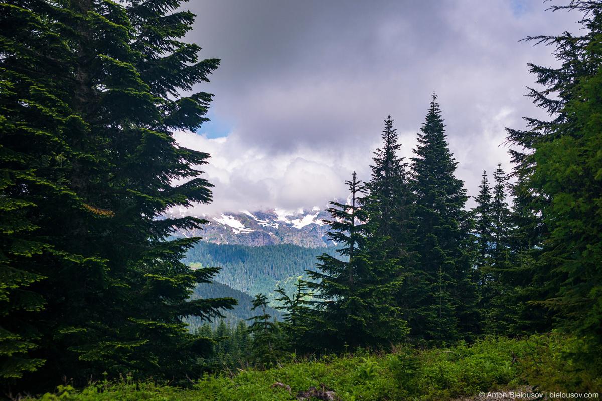 McDonald Peak — Cheam Lookout